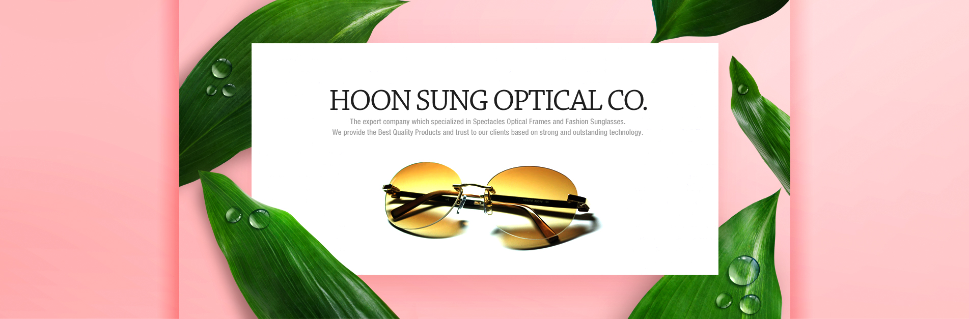 HOON SUNG OPTICAL CO. The expert company which specialized in Spectacles Optical Frames and Fashion Sunglasses.We provide the Best Quality Products and trust to our clients based on strong and outstanding technology.